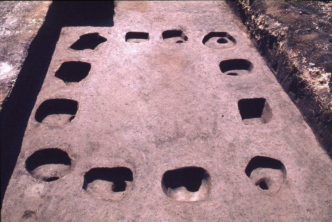 石川遺跡 掘立柱建物検出状況